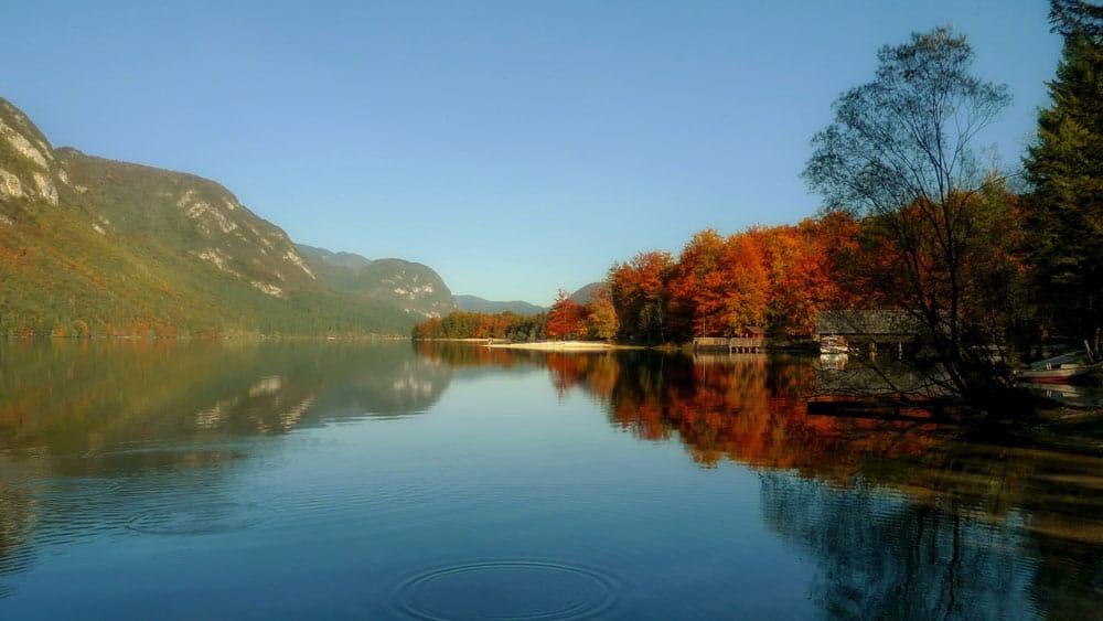 Autumn at Lake Bohinj, Slovenia