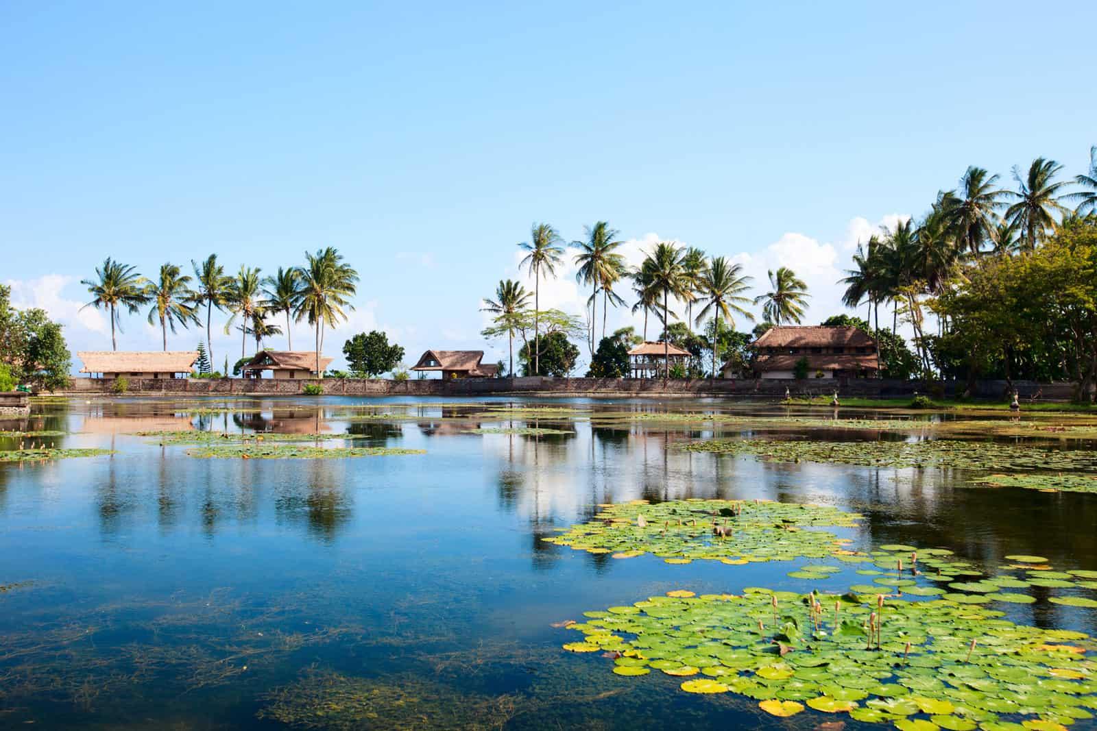Lotus Lagoon in Candidasa, Bali, Indonesia