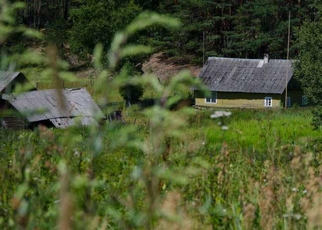 zervynos-lithuania-homestead-field