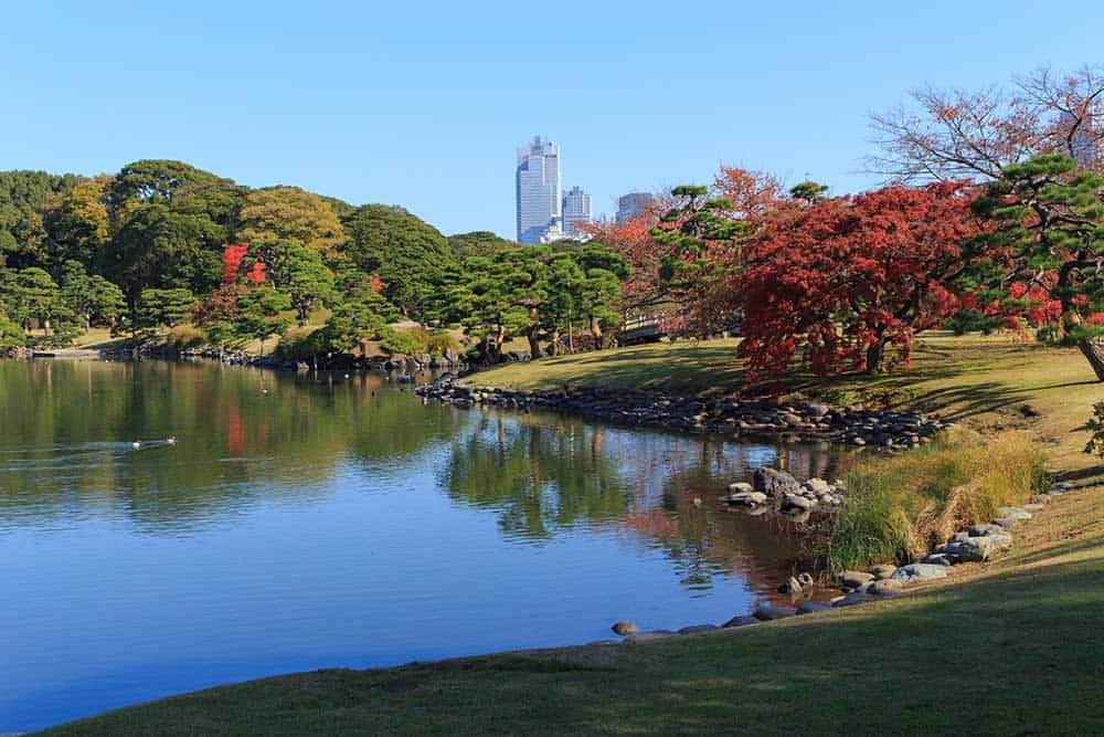 Autumn in Hamarikyu Gardens