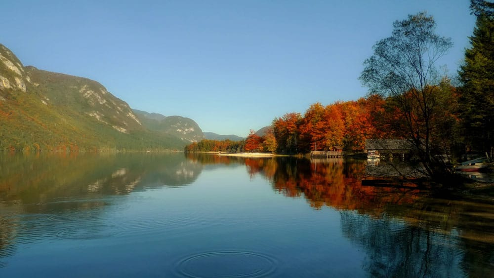 Autumn at Lake Bohinj, Slovenia