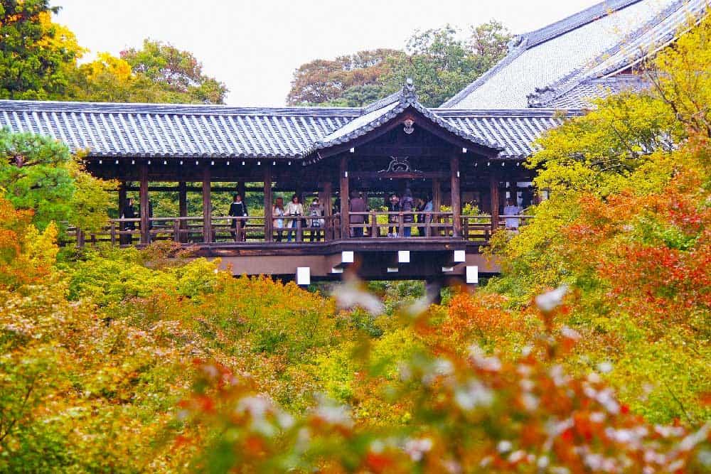 Autumn Tofuku-ji Temple