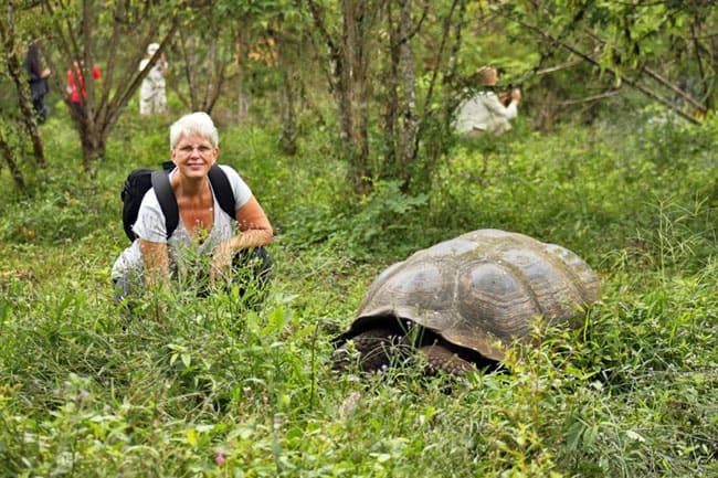 Barbara with giant tortoises in the Galapagos, Islands, Ecuador