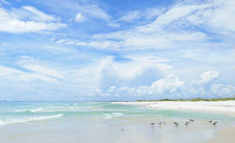 Best Beaches in Florida Gulf Coast