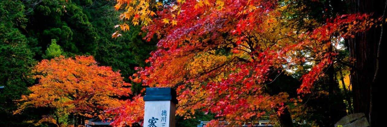 Best Day Trips from Tokyo, Japan