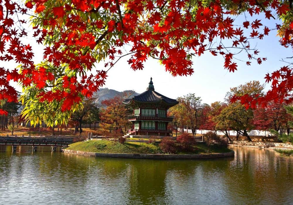 Best Time to Visit Korea