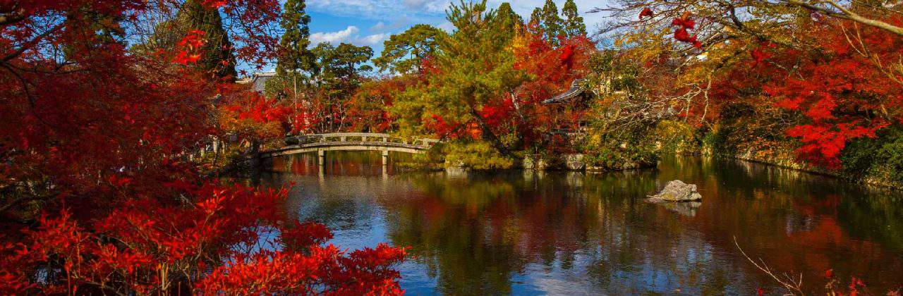 Best Time to Visit Kyoto, Japan: Kyoto Weather Guide