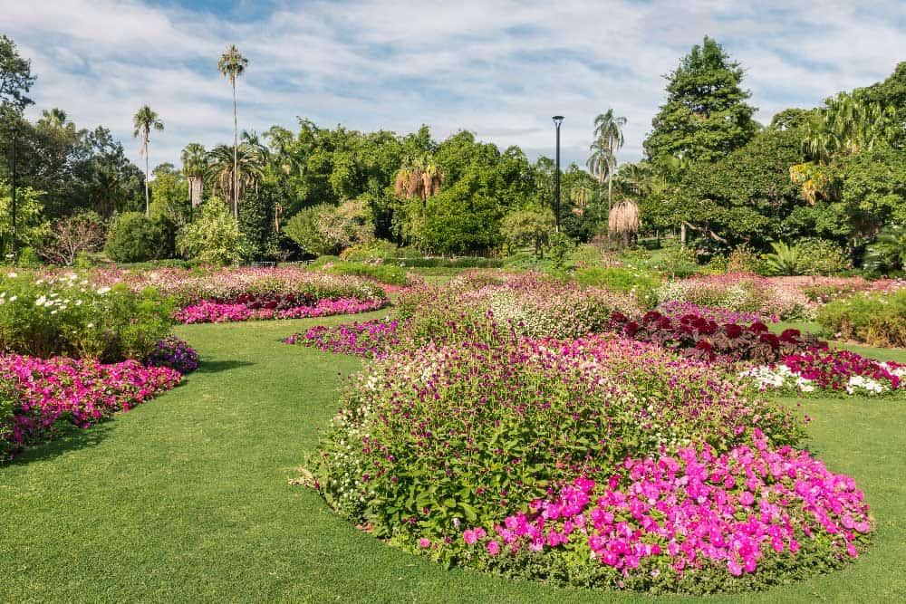 Botanic Garden Brisbane