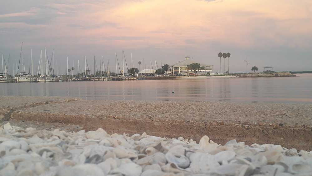 Davis Island Beach