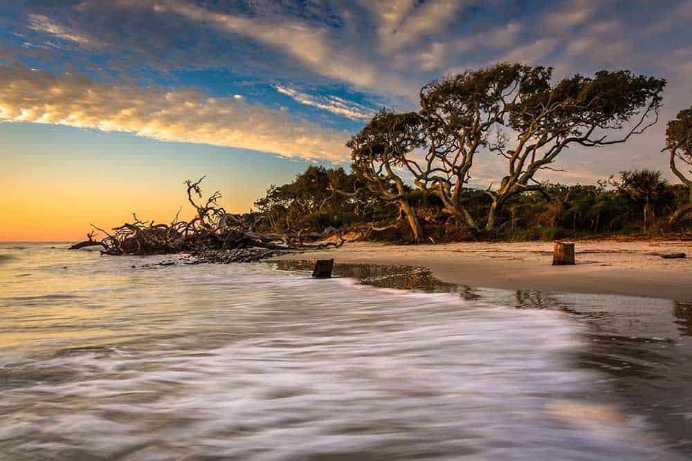 Driftwood Beach on Jekyll Island