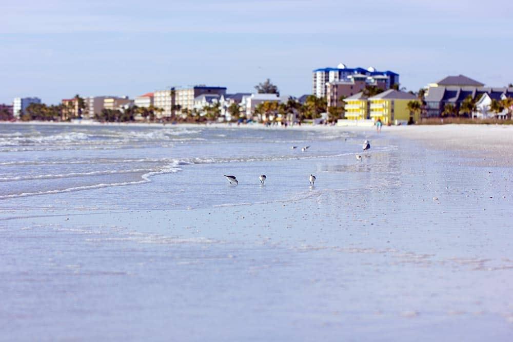 Estero Island