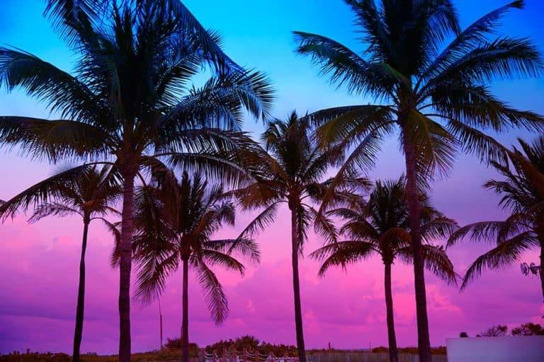 Florida Road Trip Itinerary 1-Week