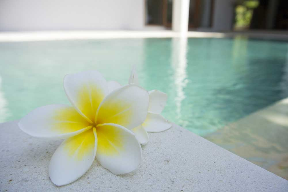 Frangipani at Balinese Spa