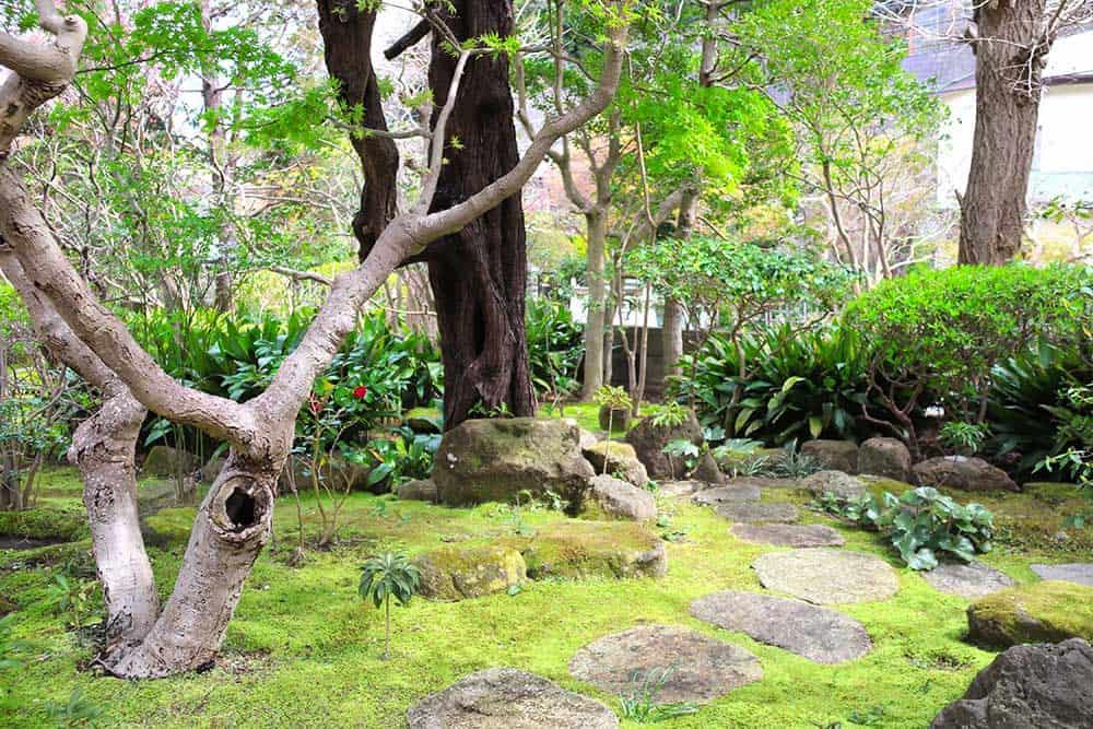 Garden @ Hokokuji Temple, Kamakura