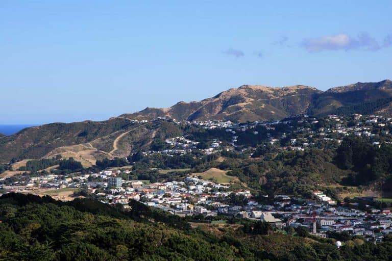 Hiking & Best Walks in Wellington