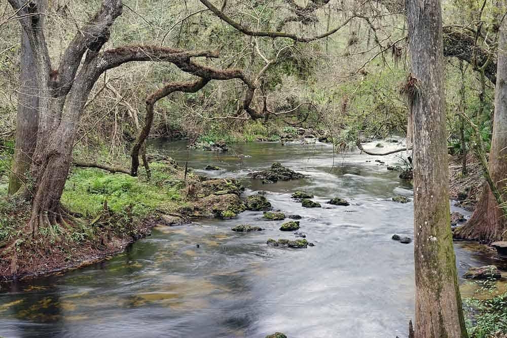 Hillsborough River State Park Tampa