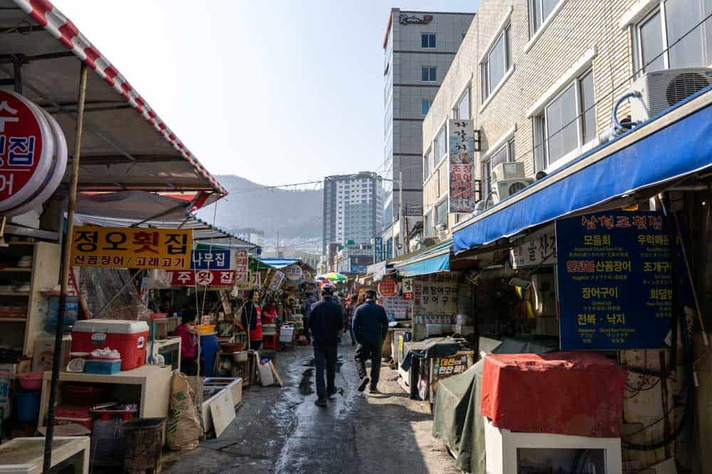 Jagalchi Fish Market in Busan