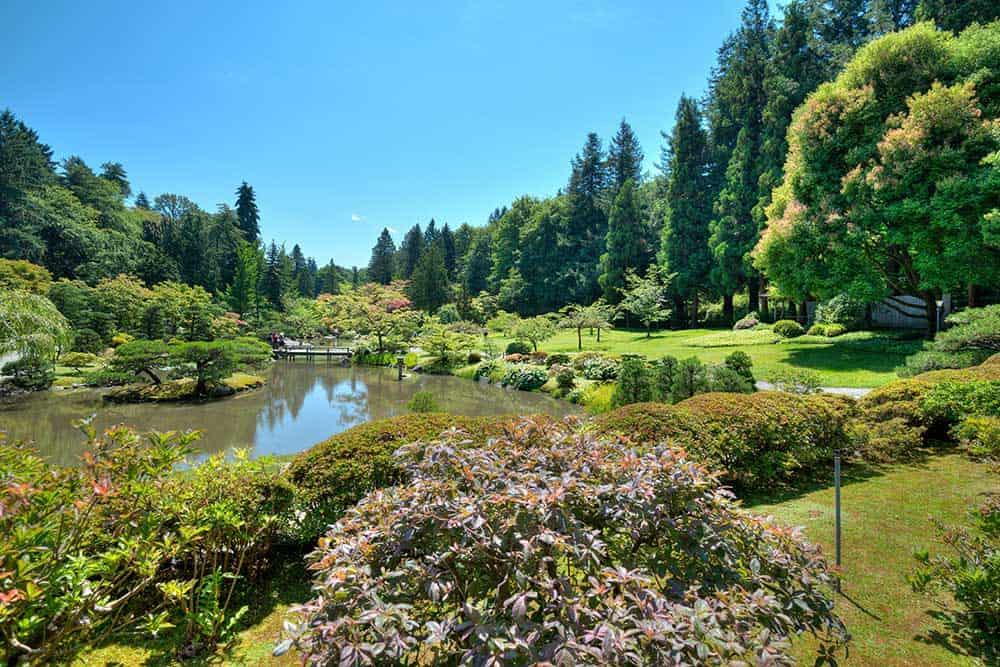 Japanese Garden at Washington Park Arboretum