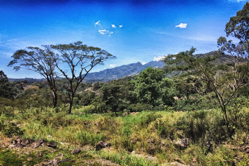 View of Jungle and Volcan Baru