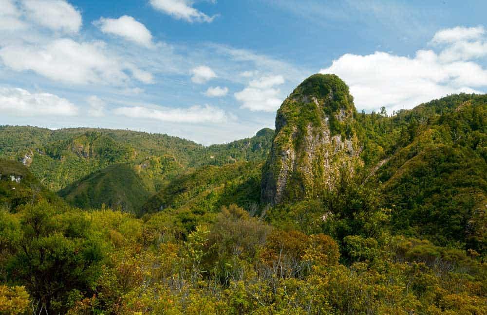 Kauraerange Valley Pinnacles