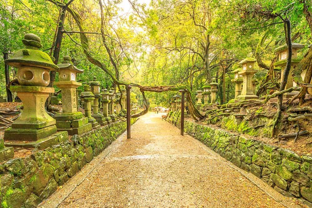 Manyo Botancial Garden