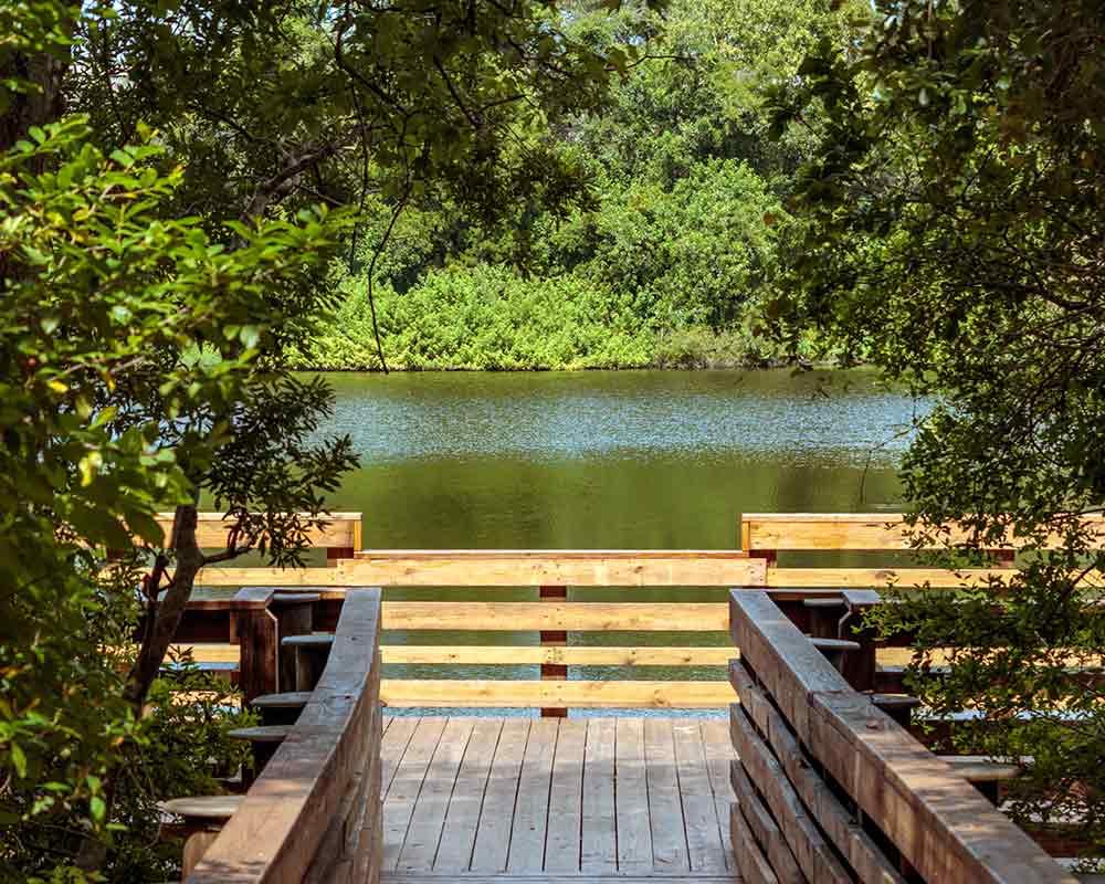 Moccasin Lake Nature Park