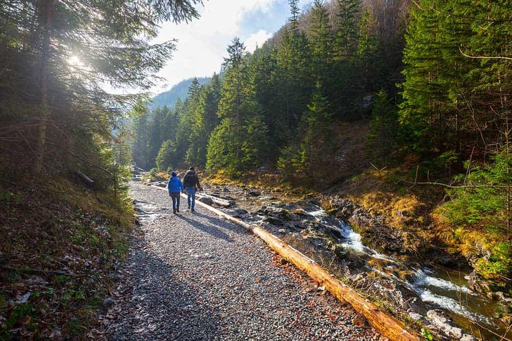 Mountain Trail in Zakopane