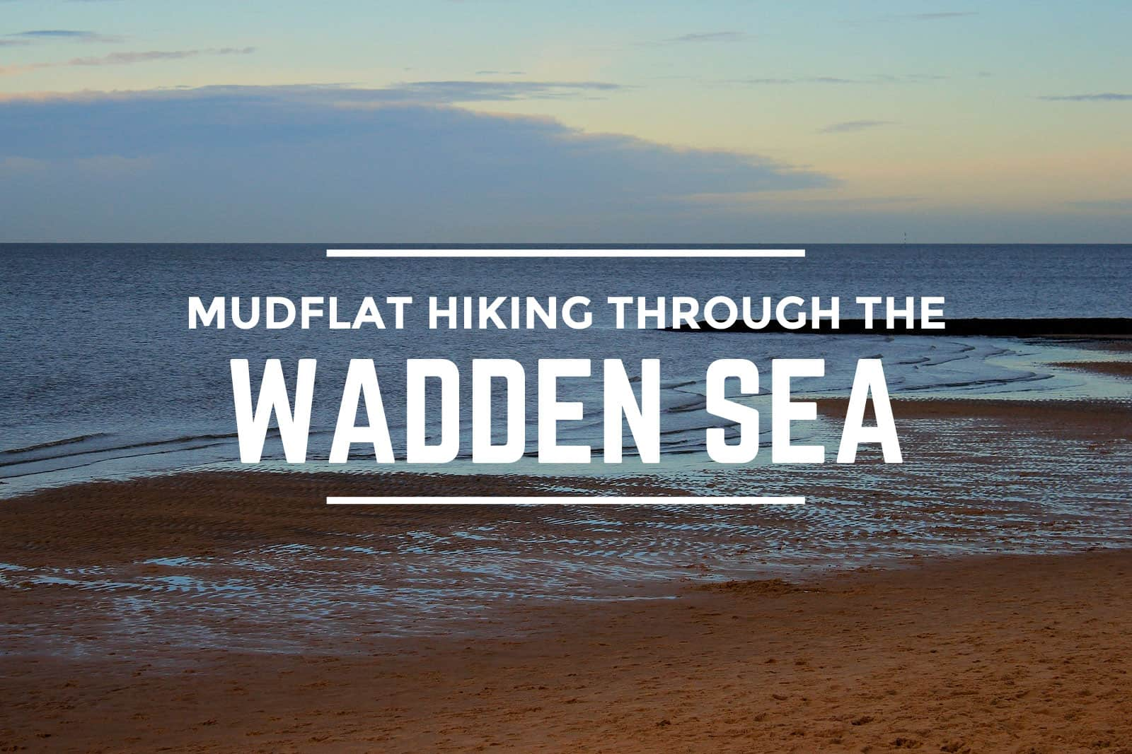 Mudflat Hiking Through the Wadden Sea