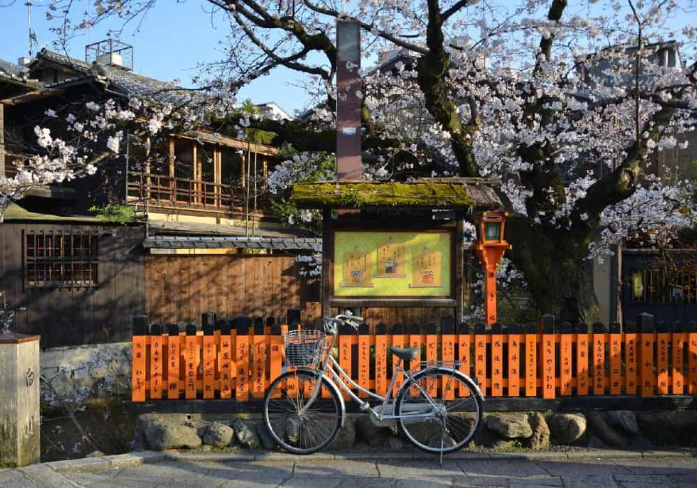 One Day in Kyoto: A Complete 1-Day Kyoto Itinerar