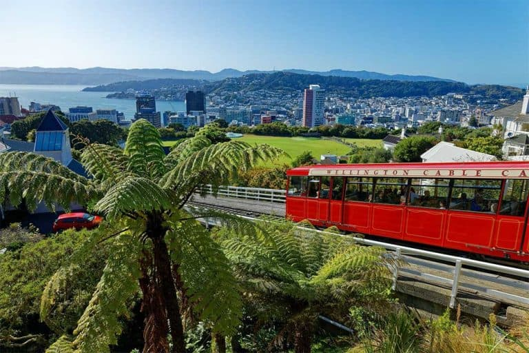 One Day in Wellington Itinerary
