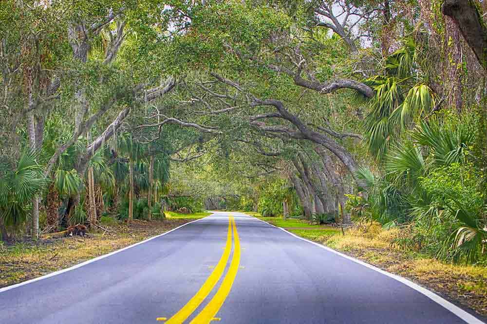 Ormond Beach Scenic Loop and Trail