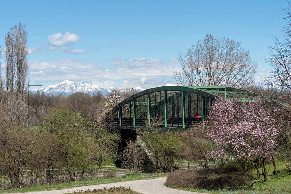 Parco Nord Bicocca