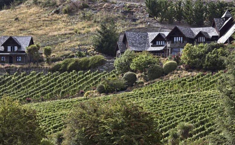 Queenstown Wineries & Vineyards