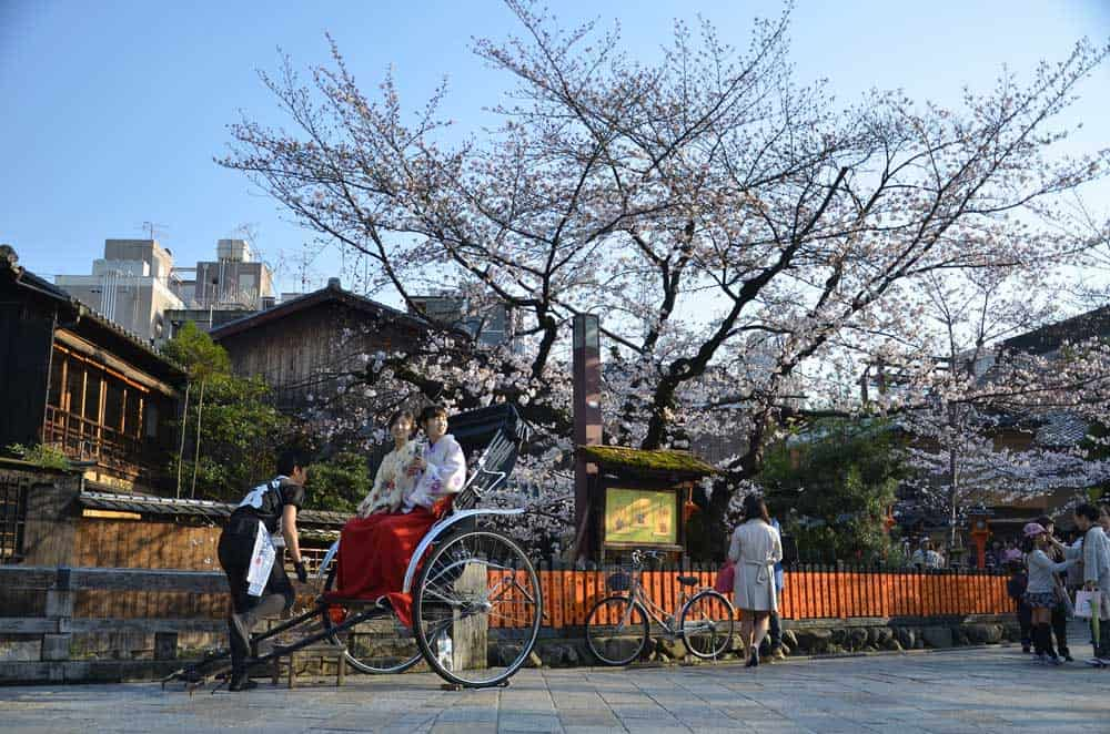 Sakura in Kyoto, Japan