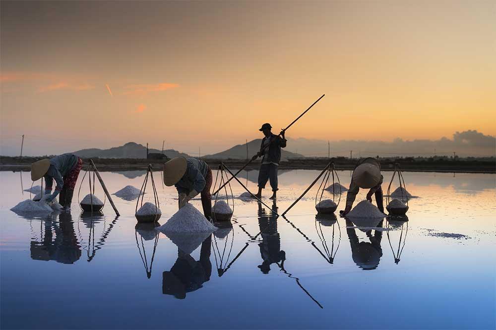 Salt Fields in Hon Khoi, Vietnam