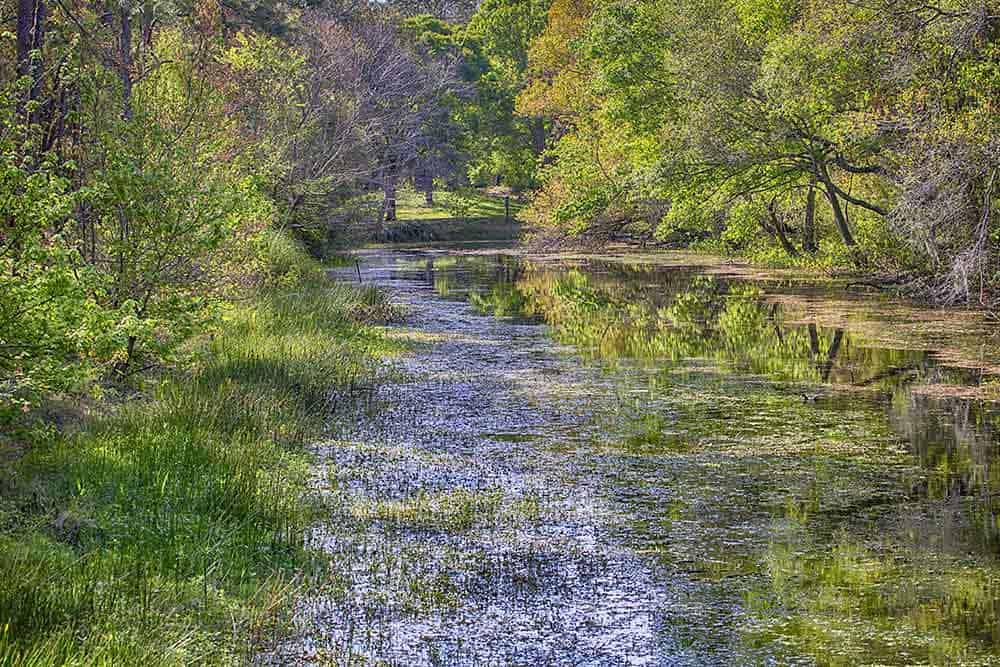 Sawgrass Lake Park