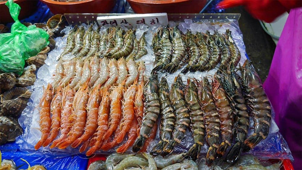 Shrimp @ Noryangjin Fish Market in Seoul