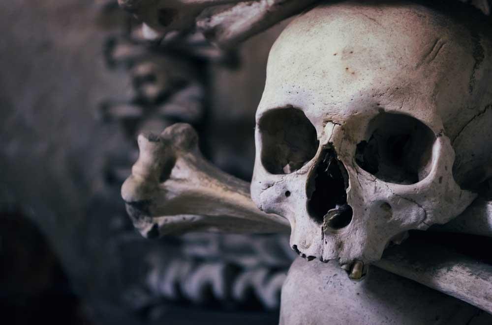 Skull at Sedlec Ossuary, Kutna Hora