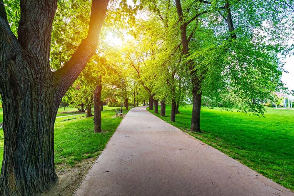 Spring in Letna Park