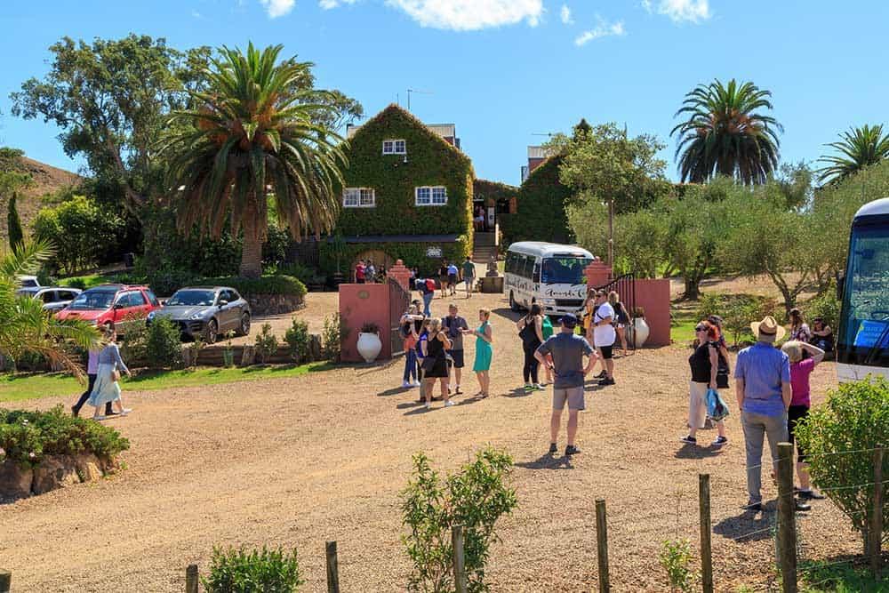 12 Must Visit Waiheke Island Wineries