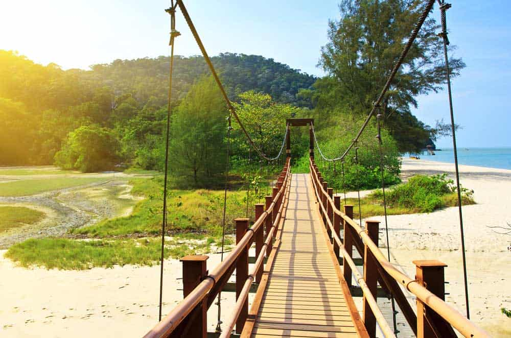 Suspension Bridge in Penang National Park