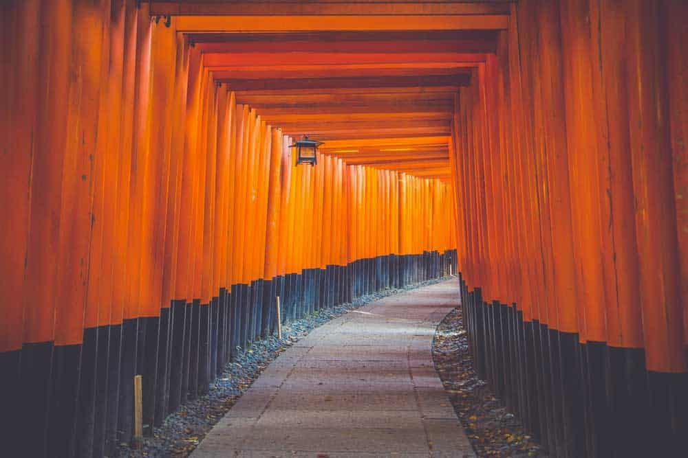 Torii at Fushimi-inari taisha in Kyoto, Japan