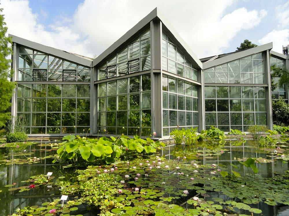 Tropicarium at Palmengarten in Frankfurt