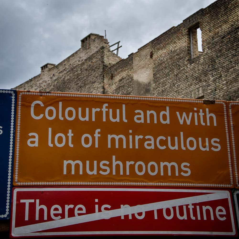 Mushroom Sign in Užupis, Vilnius, Lithuania