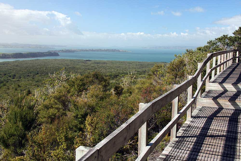 Walkway on Rangitoto Island