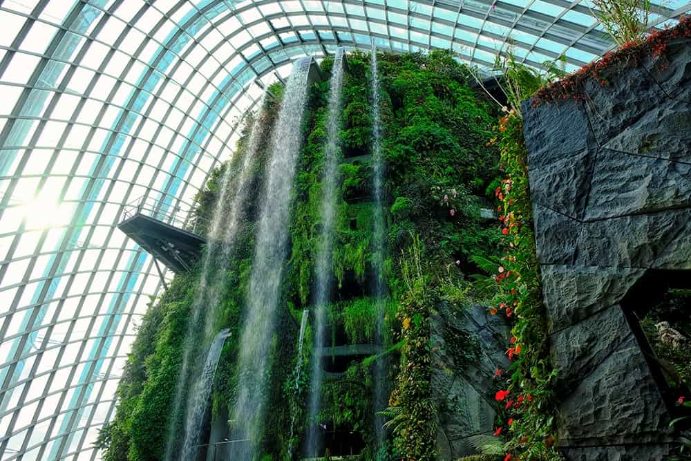 Waterfall at the Cloud Forest