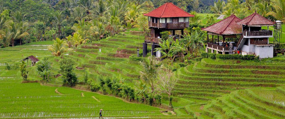 Where to Stay in Bali: The Best Hotels & Areas