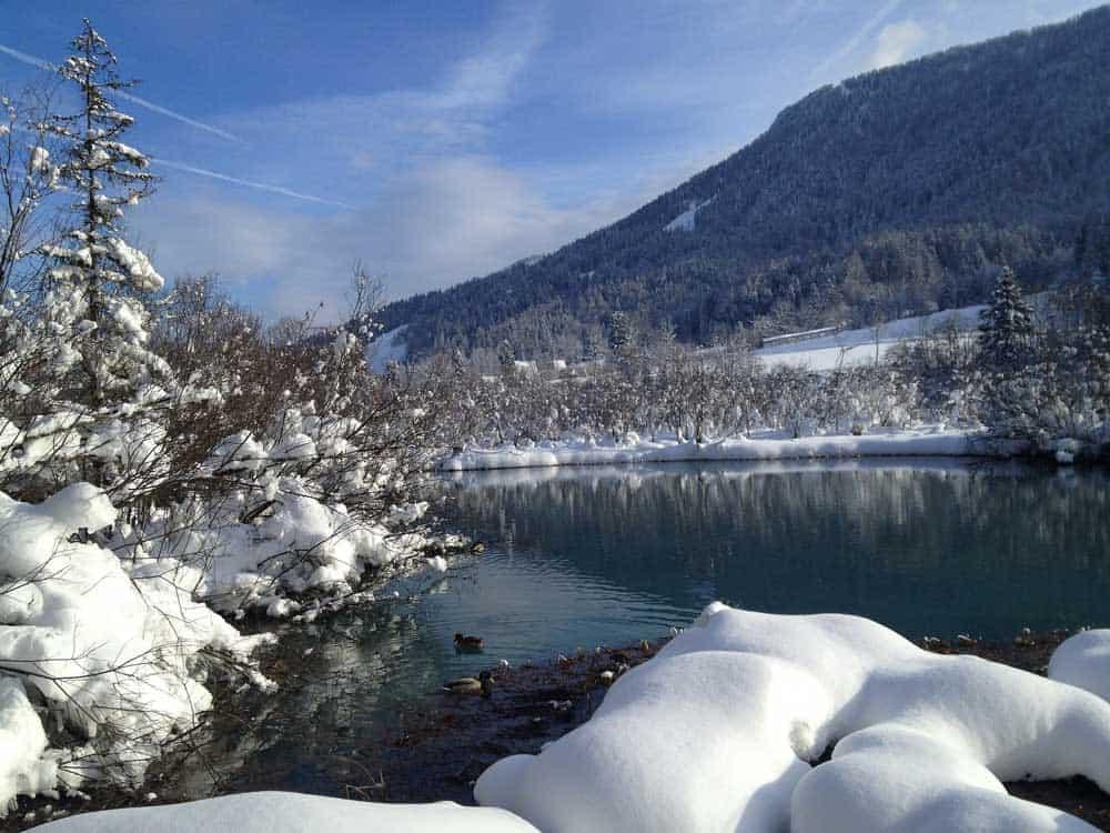 Winter Zelenci
